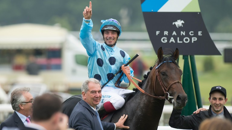 Almanzor: the European champion shuttling to New Zealand is a huge coup