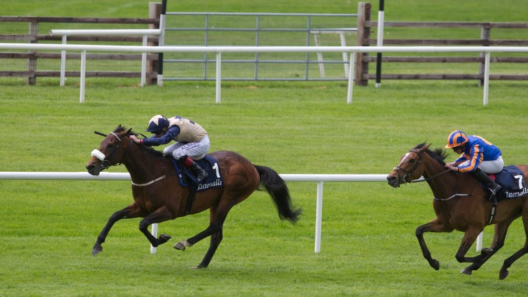 Fascinating Rock and Pat Smullen beat Found in last year's Tattersalls Gold Cup