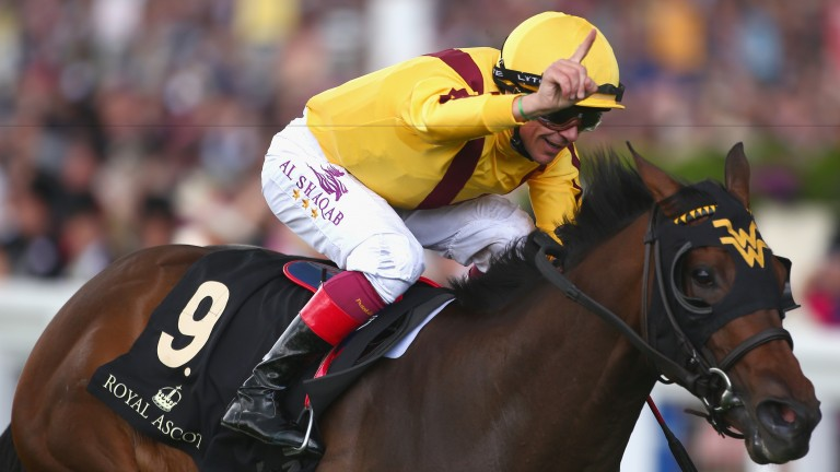 Lady Aurelia: could threaten broodmare record prices when she comes under the hammer