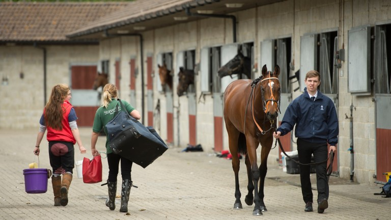 A proposed pay increase for stable staff was one of the issues that was discussed in detail at the trainers' AGM