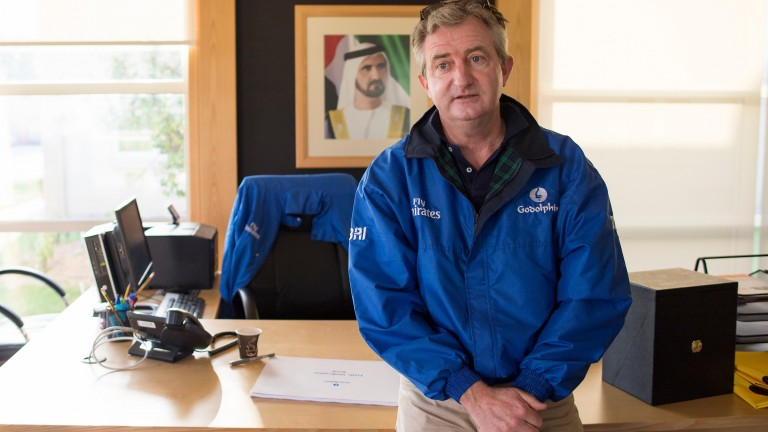 John Ferguson: ended his association with Godolphin this week