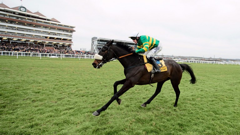 Mr Mole: a memorable Game Spirit Chase winner at Newbury in 2015, particularly for jockey AP McCoy
