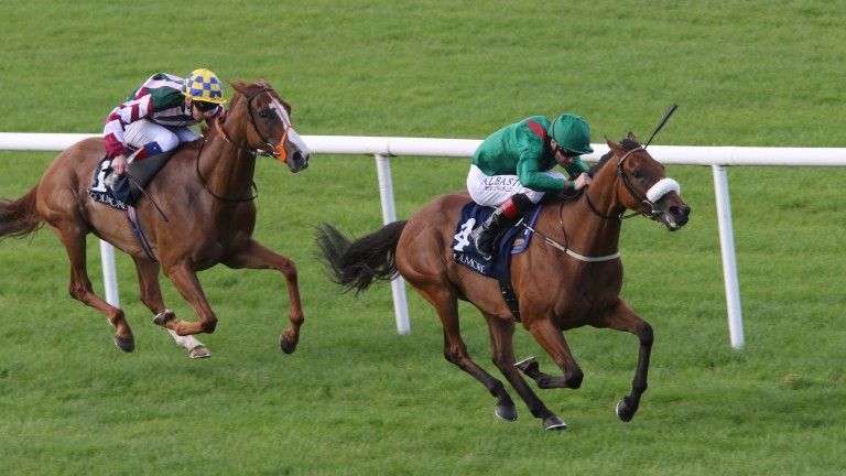 Tanaza: dual Group 3 winner is in line for a liaison with Frankel
