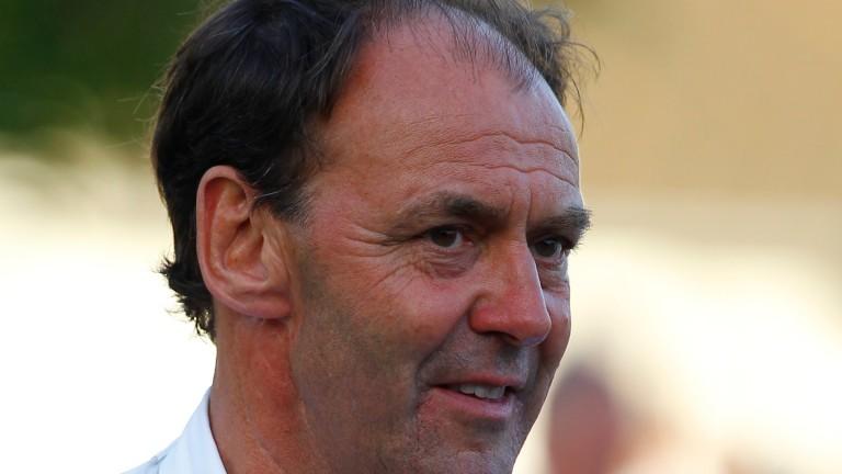 Angus Gold: thinks speed breeding has gone too far in Australia