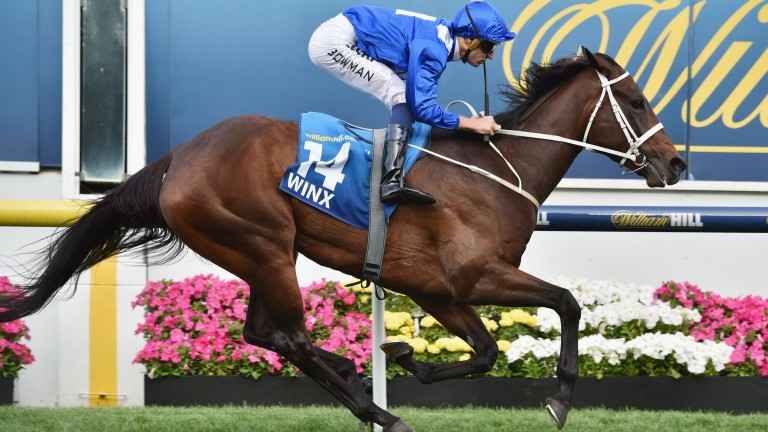Winx runs away with last year's Cox Plate