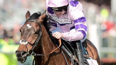 Zarkandar: Long Distance Hurdle at Newbury is a possible starting point