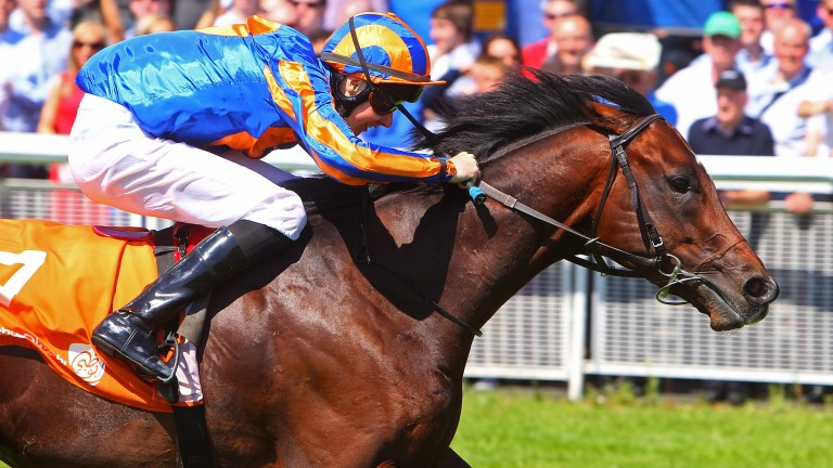 Power: will stand the 2018 breeding season at Oaklands Stud in New Zealand