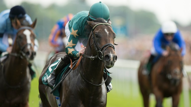 Ajaya: first-season fee has been set for the son of Invincible Spirit