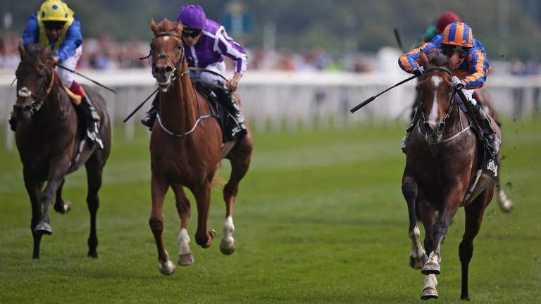 Idaho (right) winning the Betway Great Voltigeur Stakes at York last season
