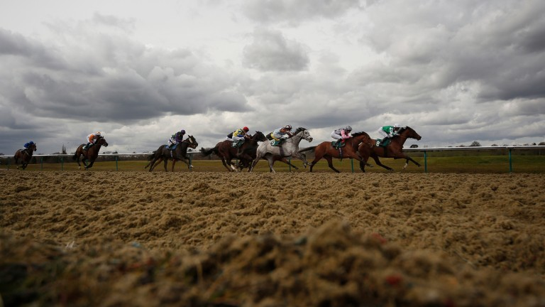 Lingfield: Good Friday meeting has become part of the calendar