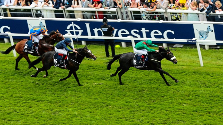 US Army Ranger (second): chases home Harzand in the Investec Derby