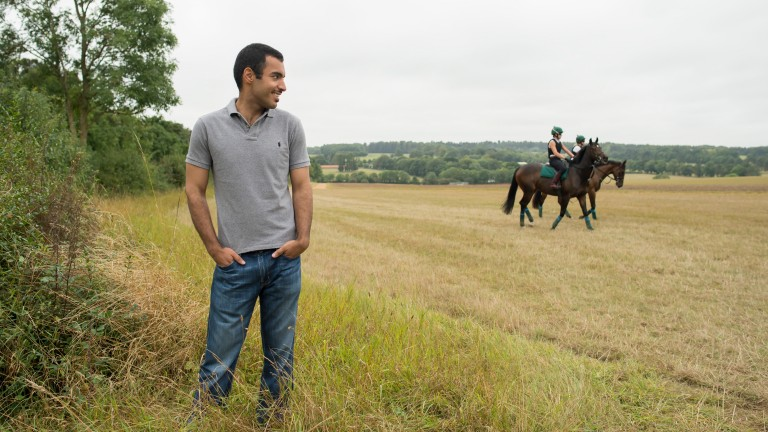 Sheikh Fahad Al Thani at his Longholes farm outside Newmarket