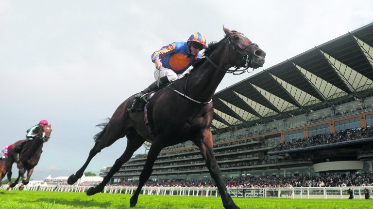 Order Of St George was a convincing winner of the Gold Cup in June