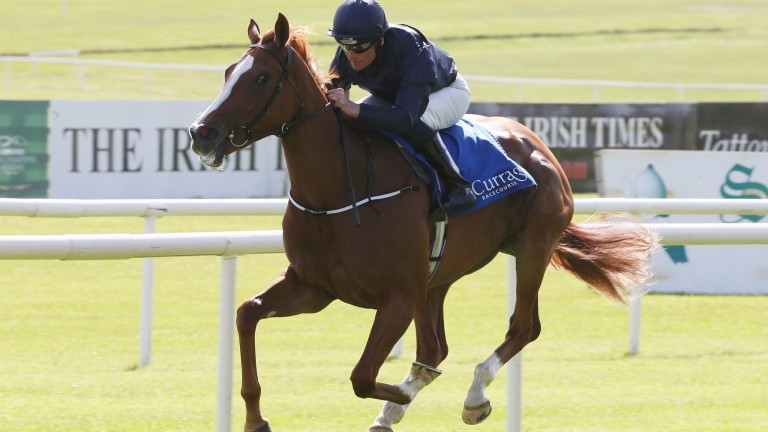 Alice Springs: heads a strong challenge for Aidan O'Brien