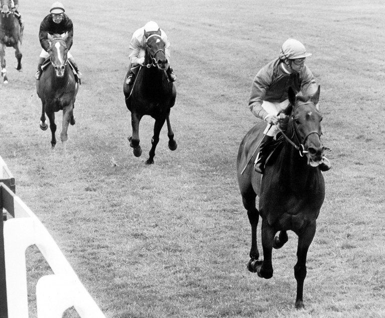 Brigadier Gerard: one of the many top horses that Brian Procter rode in work