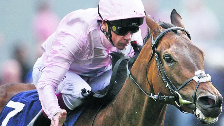 So Mi Dar: set for a drop in trip for Sun Chariot Stakes
