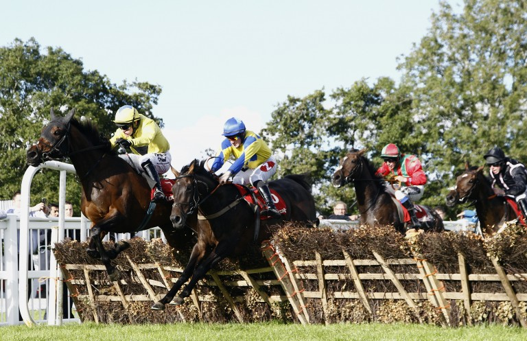 Misty Lady (near side): will be bidding for a sixth hurdles win