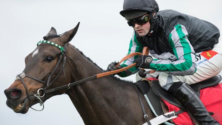 Altior: poised to make chasing debut at Kempton on Monday