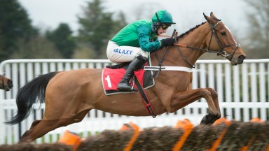 Peace and Co: will make the switch to fences at Hexham