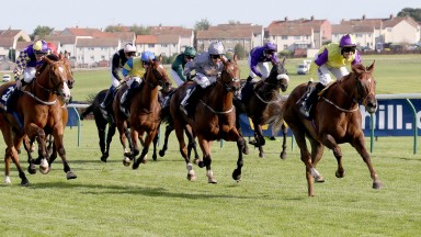 The Ayr Gold Cup, won on Saturday by Brando (right), is a highlight of the season for punters, not just the course