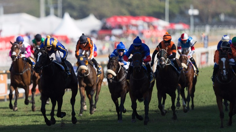 Greyville stages an eight-race card on Sunday