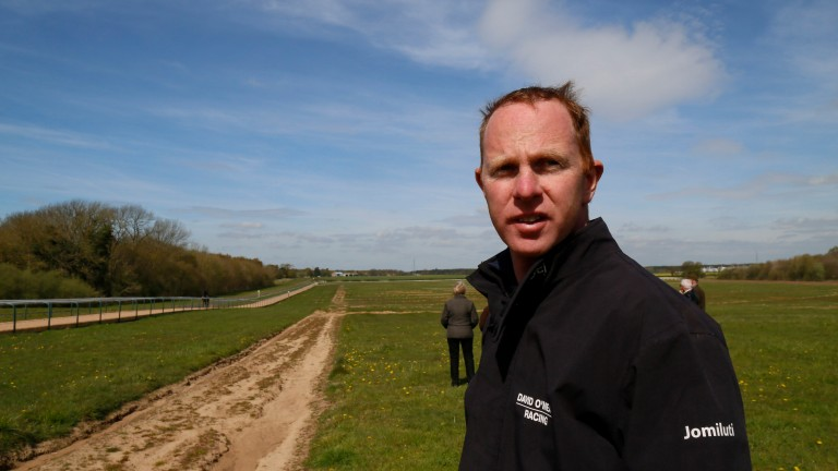 David O'Meara on the gallops at his new yard at Warthill in North Yorkshire