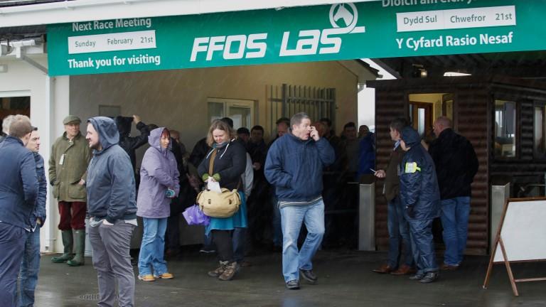Ffos Las: hosted a fair card on Friday