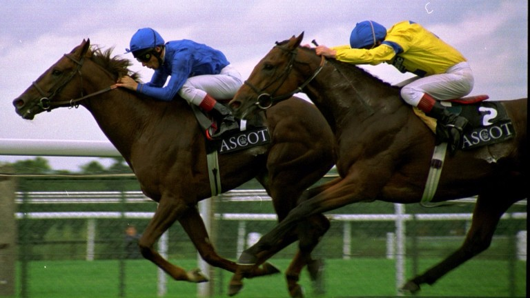 One down, six to go: Wall Street beats Salmon Ladder in the Cumberland Lodge Stakes at Ascot in 1996 to kick of Frankie Dettori's Magnificent Seven