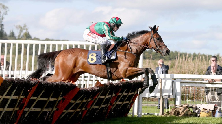 Moon Racer: won the Champion Bumper in 2015