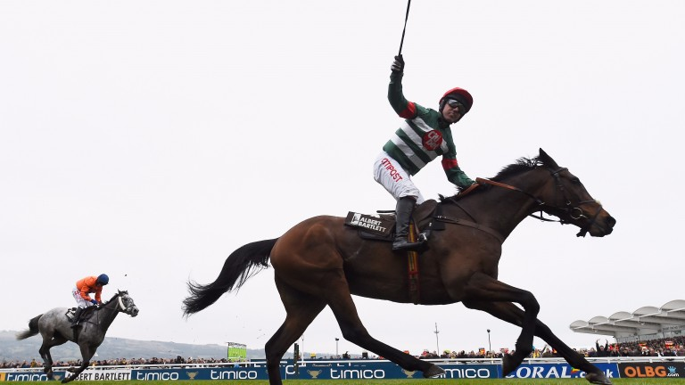 Albert Bartlett winner Unowhatimeanharry may now return in France