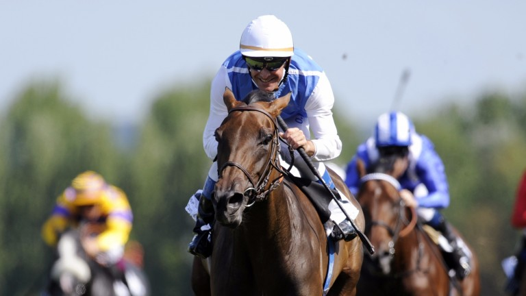 Goldikova: was trained by Freddy Head to win 14 times at the highest level