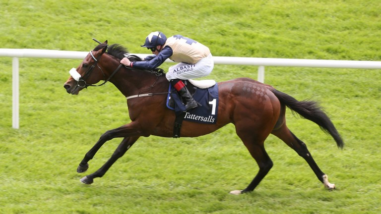 Fascinating Rock has had his first mare scanned in foal