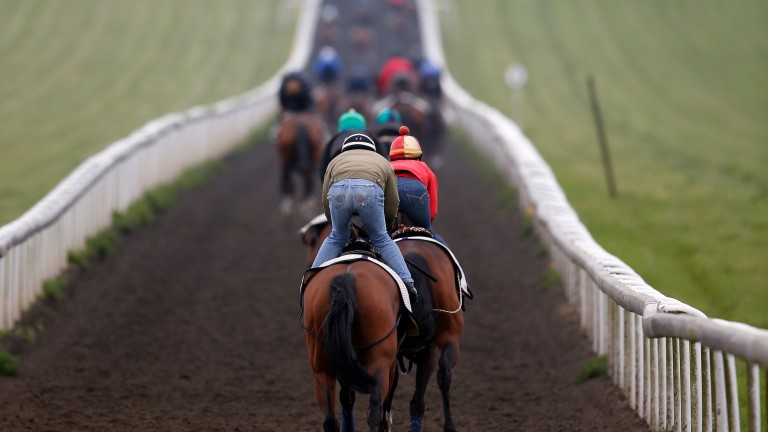 Training fees make up a sizeable chunk of a racehorse owner's bills, but there are also racing, veterinary and farrier's expenses which add to the cost