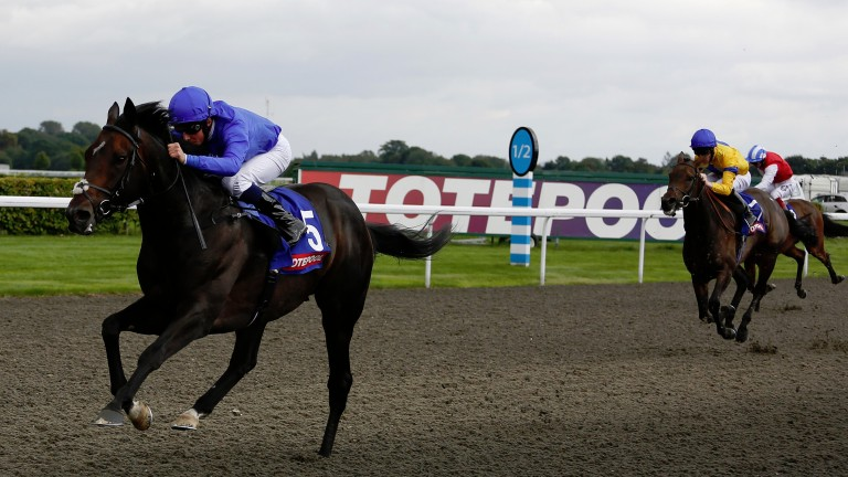 Jack Hobbs wins the 2015 September Stakes for John Gosden