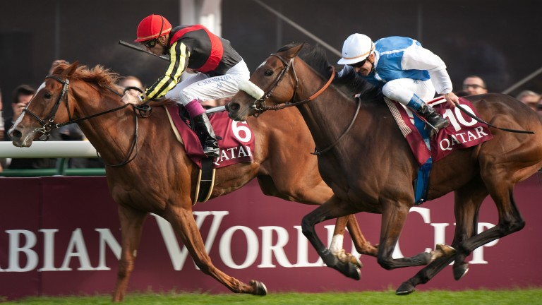 Solemia (blue and white silks) struck for France at 33-1 in 2012 when rallying past Orfevre