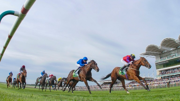The Last Lion: defeated Blue Point to win the Middle Park Stakes