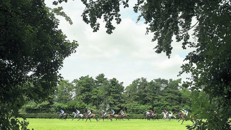 The Town Plate: Newmarket's oldest race