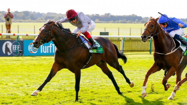 Shalaa: son of Invincible Spirit was trained by John Gosden