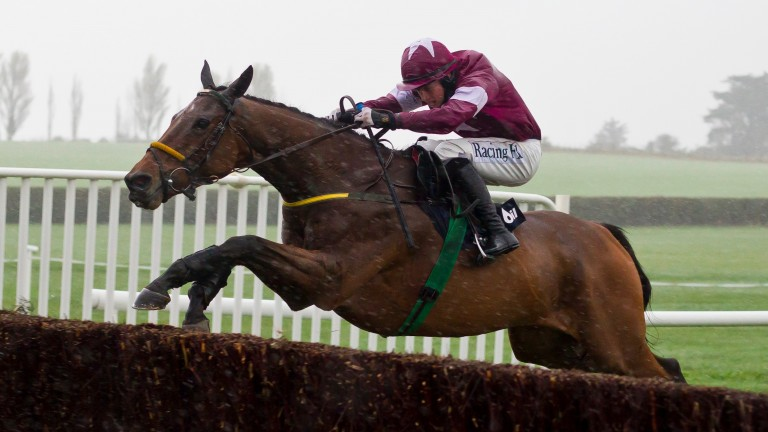 Road To Riches: is a son of Rosshill Farm resident Gamut
