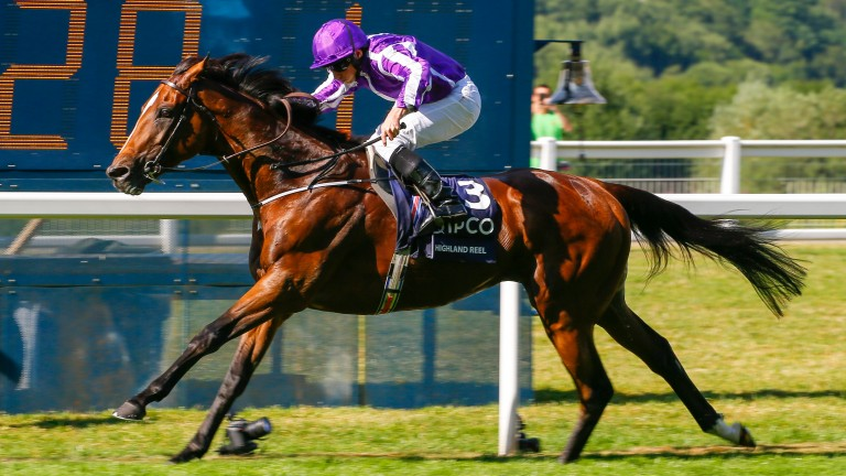 Highland Reel: tough and classy performer notches up his first winner