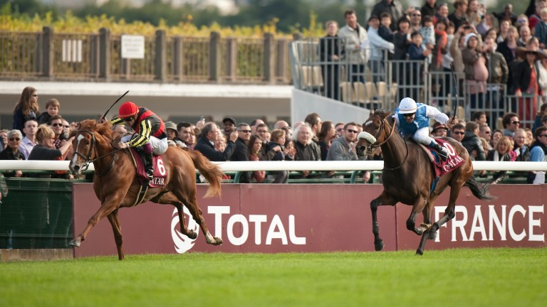 The possibility of a Japanese star like Orfevre running in the Irish Champion Stakes have been raised