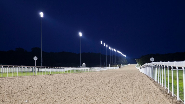 Racing takes place under the floodlights at Newcastle on Friday
