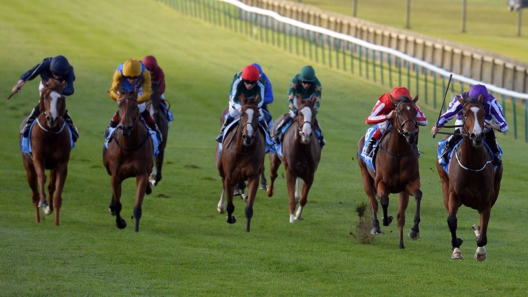 Minding (right) rounds off her juvenile campaign by winning the Fillies' Mile