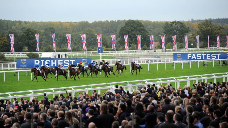 Ascot will face the force of Storm Brian on Saturday