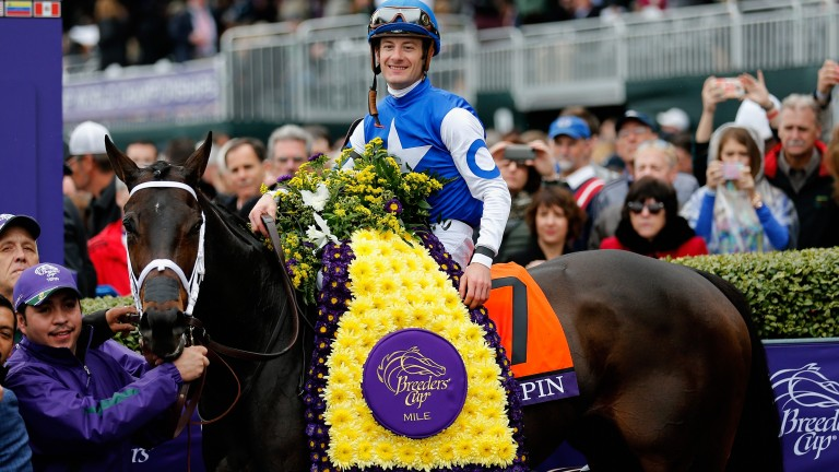 Tepin: bidding to win the Breeders' Cup Mile for the second year in succession