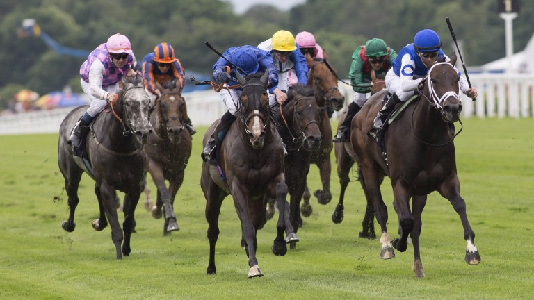 Royal Ascot heroine: Tepin (right) overcomes Belardo and the doubters for a memorable victory in the Queen Anne Stakes
