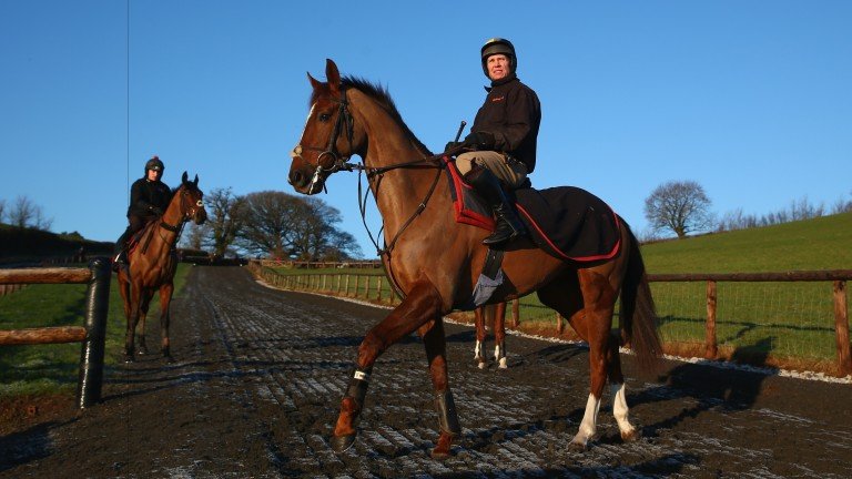 Rock The Kasbah looks tailormade for the demands of the Welsh National