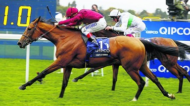 Simple Verse (nearside): good chance to win on Champions Day for second year in a row