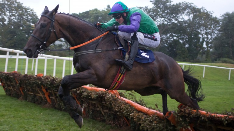 St Stephens Green: talented hurdler bids to make his mark on the biggest stage on the Flat