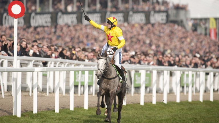 Al Ferof: provided Ruby Walsh with a perfect comeback winner at Cheltenham in 2011